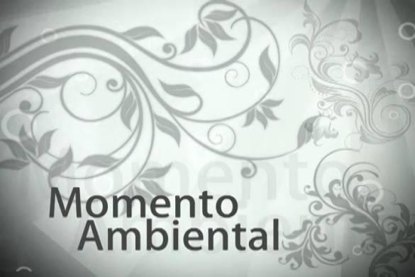 Momento-Ambiental (Arquivo MI)